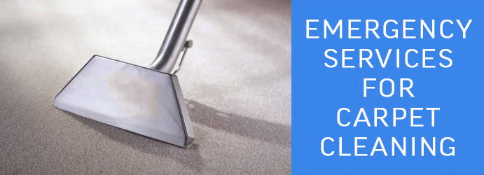 Emergency Services for Carpet Cleaning