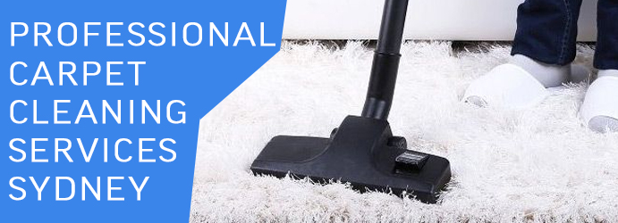 Professional Carpet Cleaning Services Warriewood Shopping Square