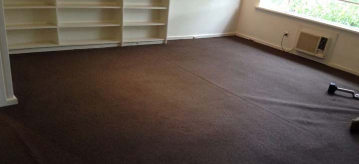 Expert Carpet Cleaning Exeter