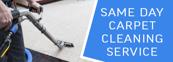 Same Day Carpet Cleaning Service Melbourne