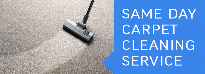 Same Day Carpet Cleaning Service Sydney